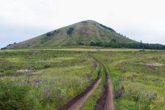从领域的看法在一座唯一山Yuraktau 免版税库存照片