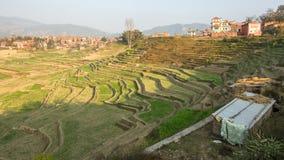 领域的看法在Bhaktapur附近镇的  免版税库存图片