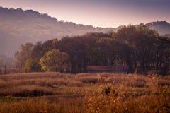 领域的秋天谷仓 库存照片