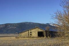 领域的老谷仓。 库存照片