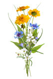 领域野花,复活节颜色的花束,被隔绝 免版税库存照片