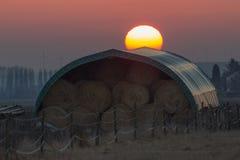 领域, Hayballs,日落 图库摄影