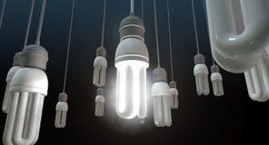领导垂悬的电灯泡 免版税图库摄影