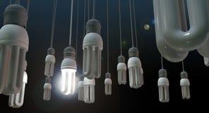 领导垂悬的电灯泡 库存图片