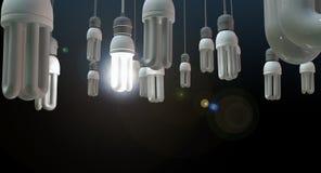 领导垂悬的电灯泡 库存照片