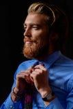 领带样式 图库摄影
