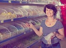 领抚恤金者选择糖果在Th商店 免版税库存照片