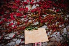 题字的地方有叶子的石墙的 图库摄影