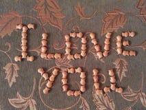 题字`我爱你` 免版税库存图片