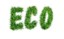 题字` ECO ` 免版税库存图片
