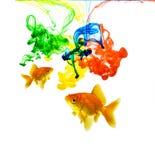 颜色五颜六色的金鱼墨水 库存图片