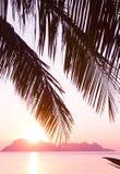 颜色使充满活力红色的日落环境美化 库存图片