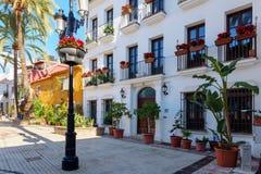 颜色和明亮的围场有老白色教会和美丽的房子的在绿色棕榈中 免版税库存图片