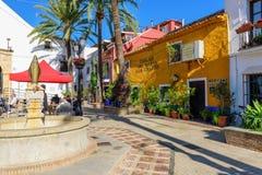 颜色和明亮的围场有老白色教会和美丽的房子的在绿色棕榈中 免版税库存照片