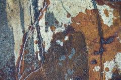 颜色和样式在一块水下的石头 免版税库存图片
