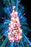 颜色圣诞树 免版税图库摄影