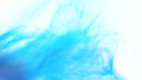 颜色墨水在水中 股票录像