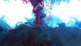 颜色墨水下落在水中 蓝色,深蓝,红颜色传播 股票视频