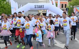 颜色奔跑节日科鲁Napoca 2019年,罗马尼亚 库存图片