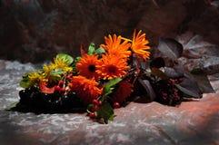 颜色季节 图库摄影
