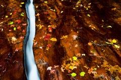 颜色小小河的秋天 免版税库存图片