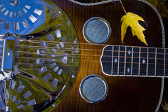 颜色感声吉他琴秋天吉他 库存图片