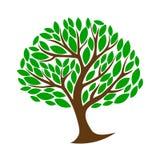 颜色树,模板,标志 皇族释放例证