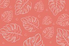 颜色的年2019生存珊瑚 腼腆的Livingcoral 热带叶子背景 免版税库存照片