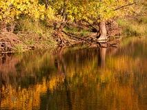 颜色秋天反映 库存图片