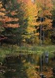 颜色秋天密执安平静的流较大 免版税图库摄影