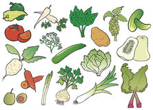 颜色组蔬菜 免版税库存图片