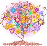 颜色结构树 库存图片