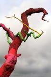 颜色结构树 免版税库存照片