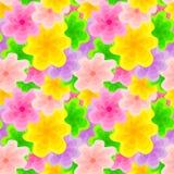 颜色花卉样式 免版税图库摄影