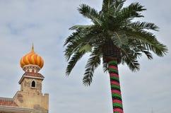 颜色装饰棕榈树 免版税库存图片