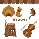 颜色褐色小组的例证 免版税库存照片