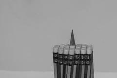 颜色铅笔捆绑铅笔的插入物中心 免版税库存图片
