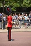 颜色防护具伦敦皇家进军 库存图片