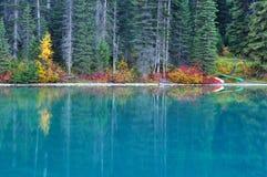 颜色鲜绿色秋天湖国家公园yoho 免版税图库摄影