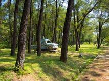 颜色,越南- 2017年9月13日:在一个森林里面的美丽的扔石头的汽车在一个公园位于近颜色镇  免版税库存照片