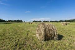 颜色滚乌贼属的乡下干草堆 免版税库存图片