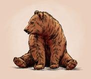 颜色刻记被隔绝的北美灰熊 向量例证