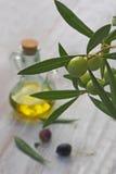 额外处女橄榄油瓶和绿色olivas 免版税库存图片
