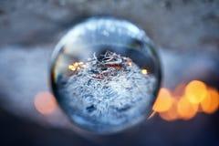 颠倒的看法通过在被弄脏的营火的lensball在森林里 库存图片