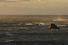 风、波浪和风大浪急的海面日落的在开普敦,南非 图库摄影