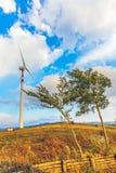 风力发电机 库存照片