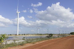 风力在北里约格朗德,巴西 库存照片