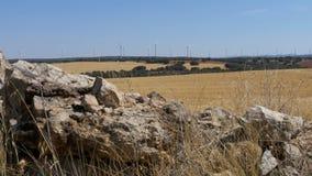 风力在西班牙的沙漠 影视素材