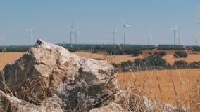 风力在西班牙的沙漠 股票视频
