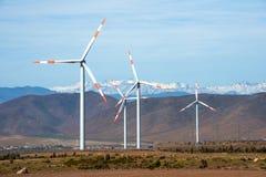 风力场在智利 免版税库存照片